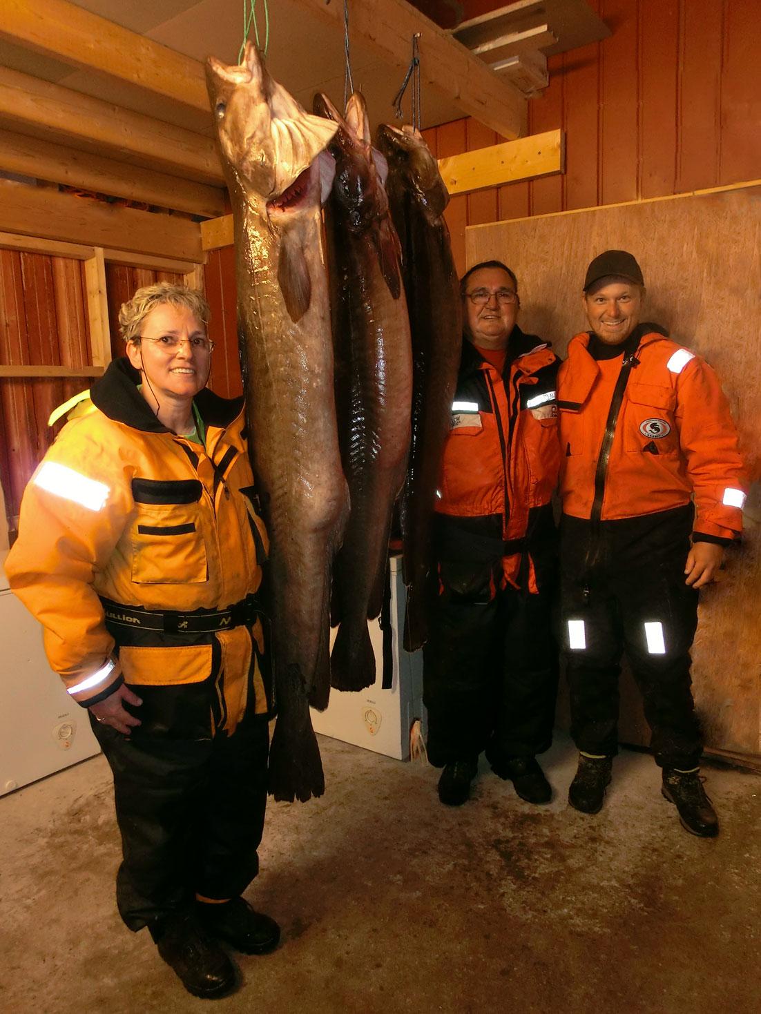 HubbeltopfHochseeangeln 3 Lengs in Flatanger gefangen